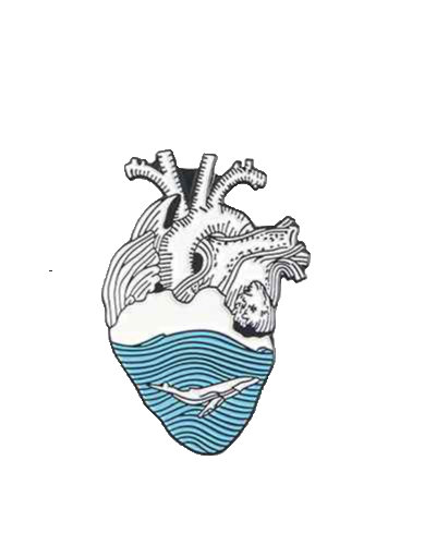enamel pin wale ocean
